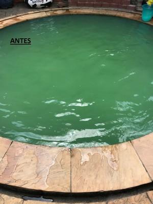 Limpeza de Piscina Preço Zona Norte - Limpeza de Piscina água Esverdeada